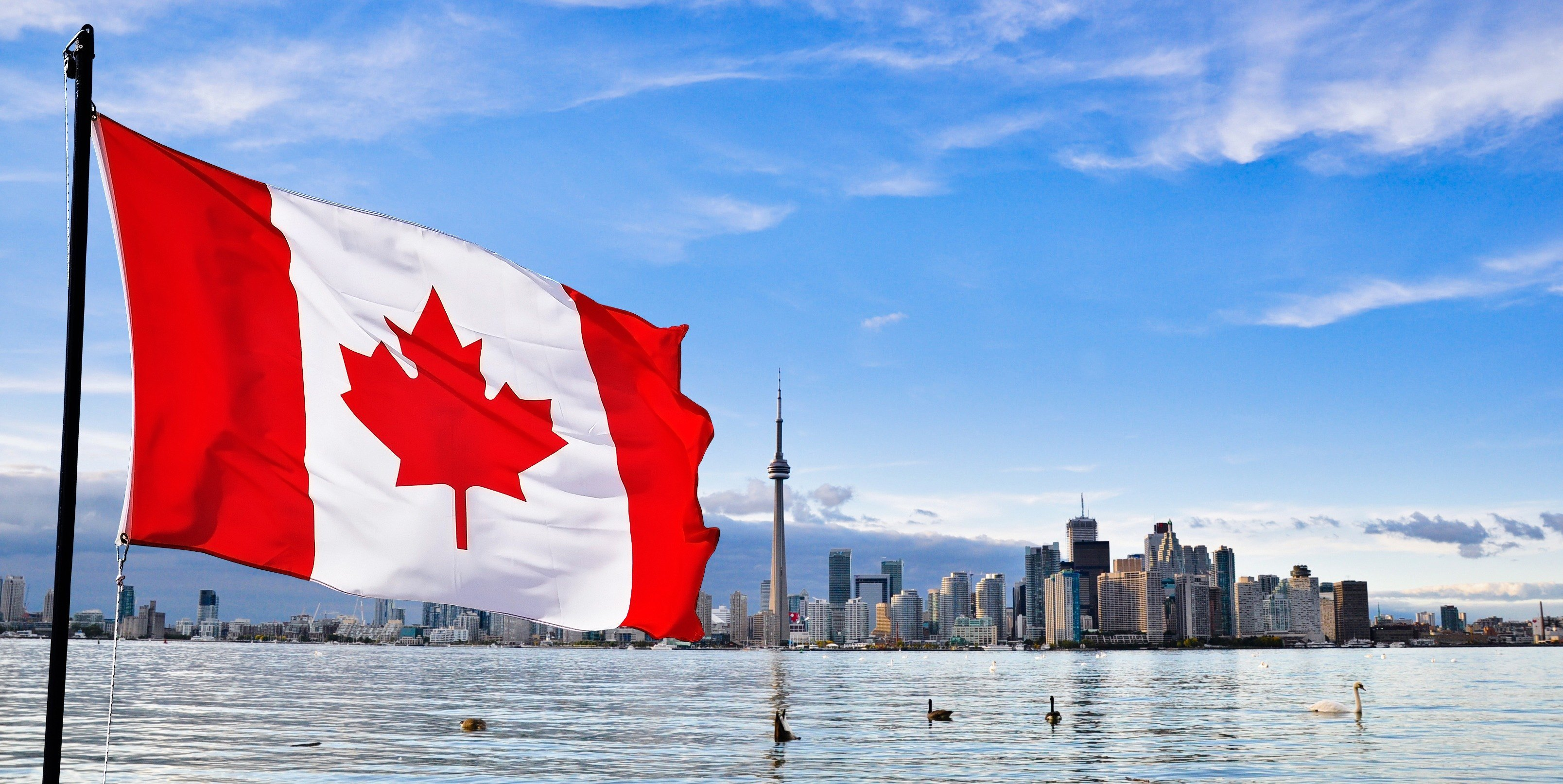Canadá crea programa de visados rápidos para profesionales altamente cualificados